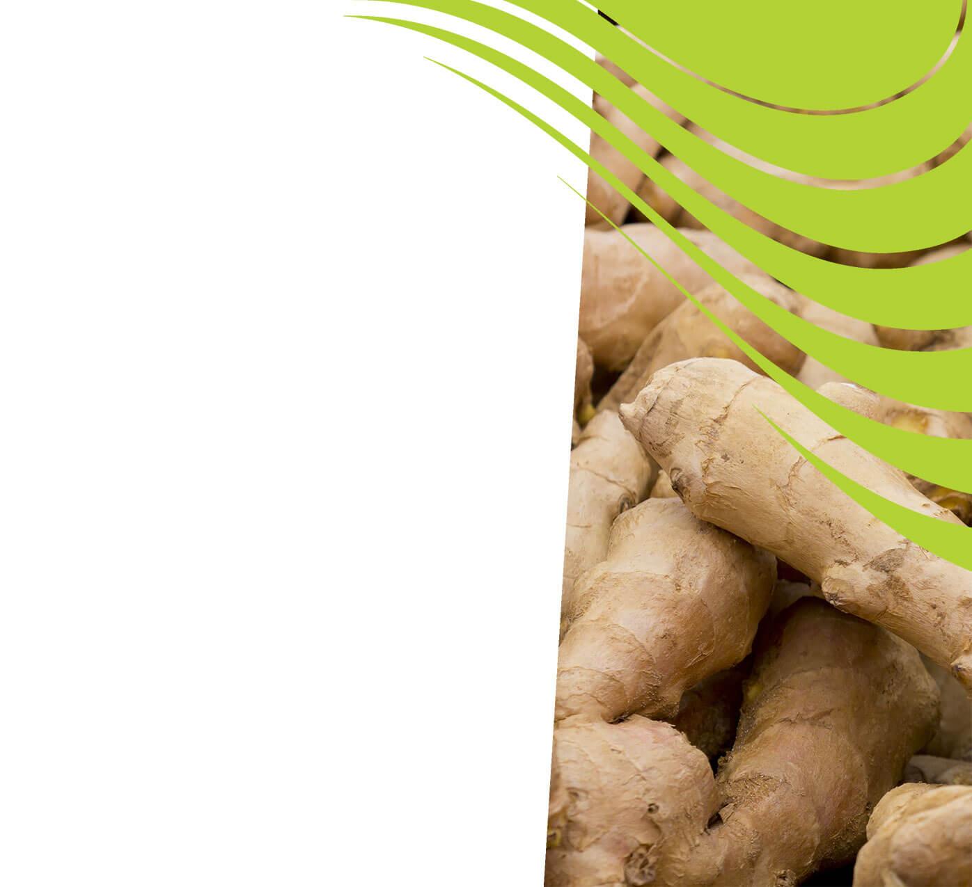 fertiliser for ginger