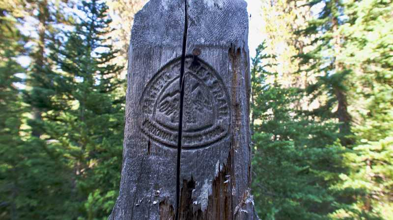 A PCT emblem embossed into the side of a post