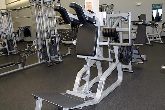 Forwards and backwards squat machine