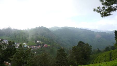 View into valley