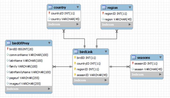 A database entity relationship diagram showing the birdLink between tables