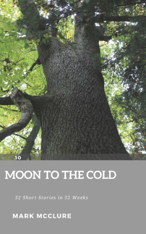 10 Moon to the Cold childrens short story
