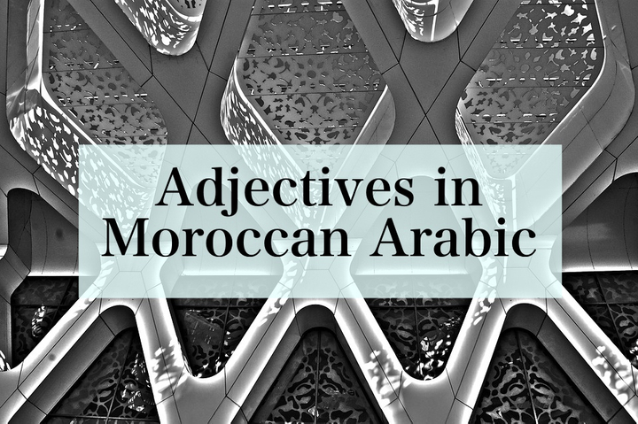 Adjectives in Moroccan Arabic