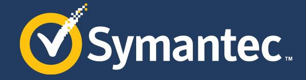 Symantec Software and Services India Ltd.