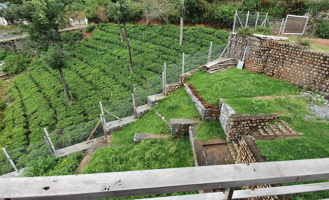 View of the kitchen garden from a bedroom private balcony