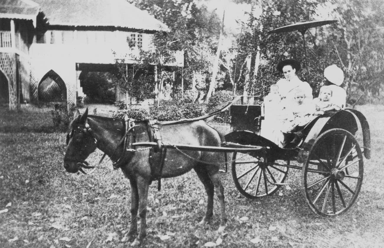 Horse and carriage, 1880s