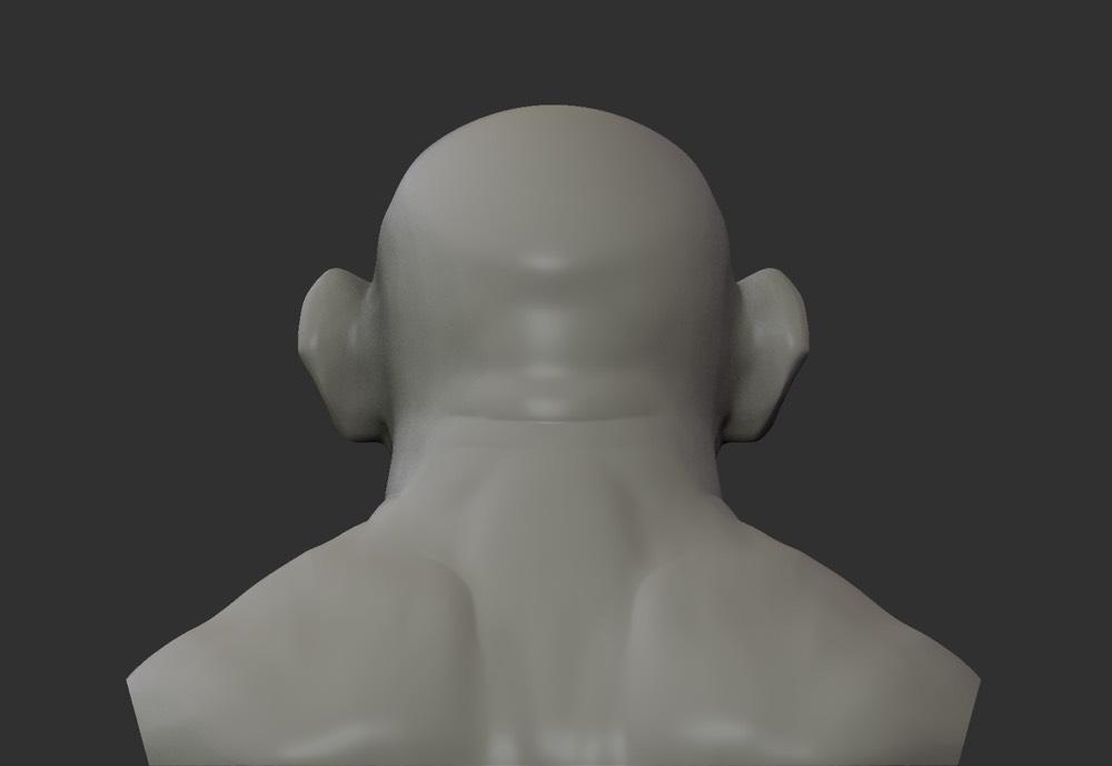 Bust 5
