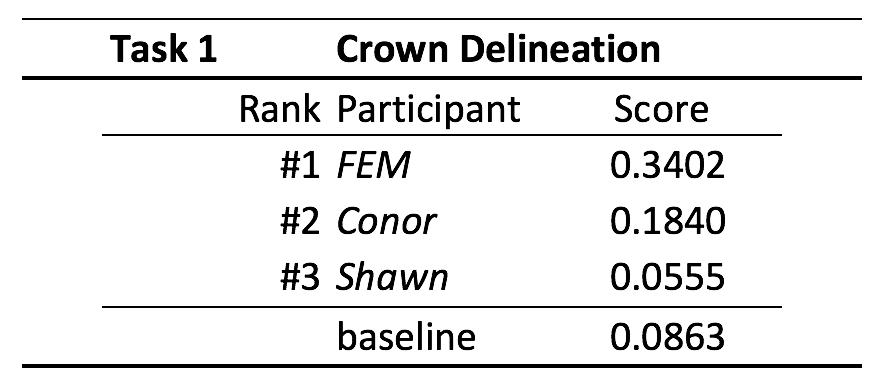 Figure showing scoring table task1