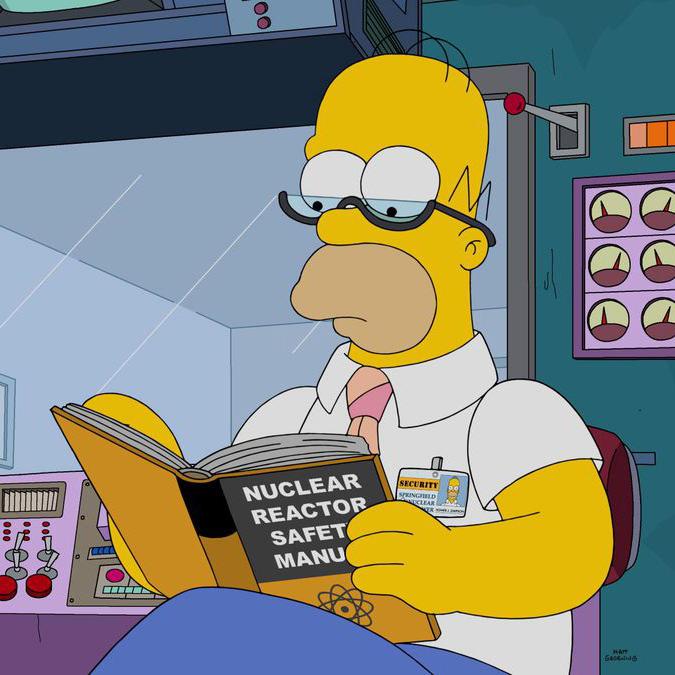Гомер наконец решил изучить руководство по технике безопасности ядерного реактора. Кадр из мультсериала «Симпсоны»