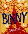 Binny in secret by Hilary McKay