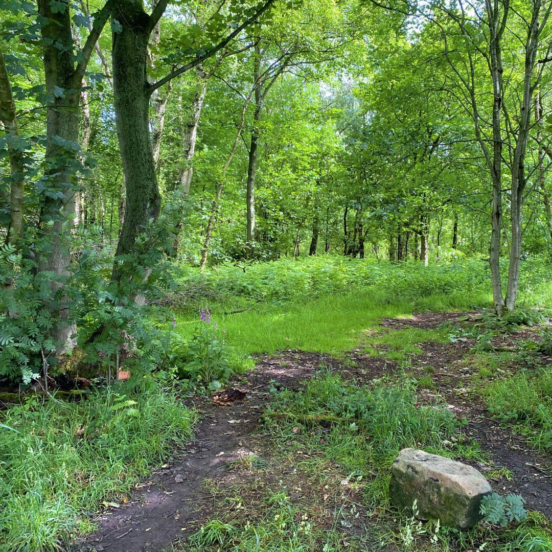 Breary Marsh path