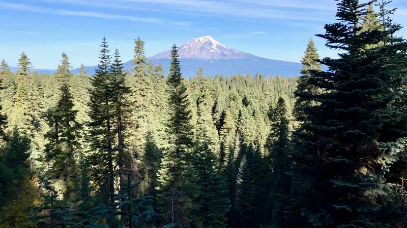 A view of Mt. Shasta