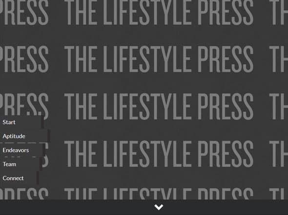 The Lifestyle Press