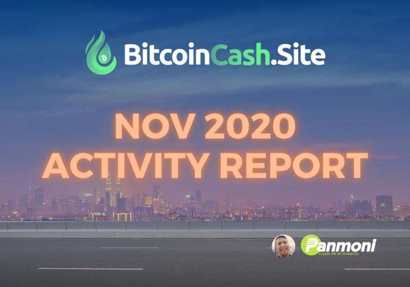 BitcoinCash.Site Nov 2020 Activity Report