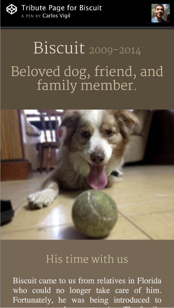 image of a website with the heading 'Tribute Page for Biscuit' and a dog underneath.