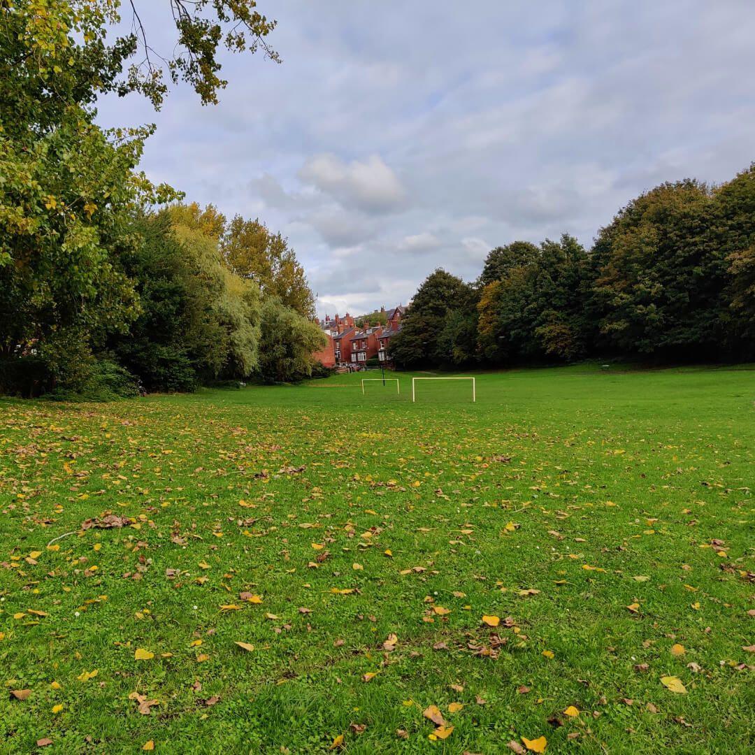 Burley Village Green field