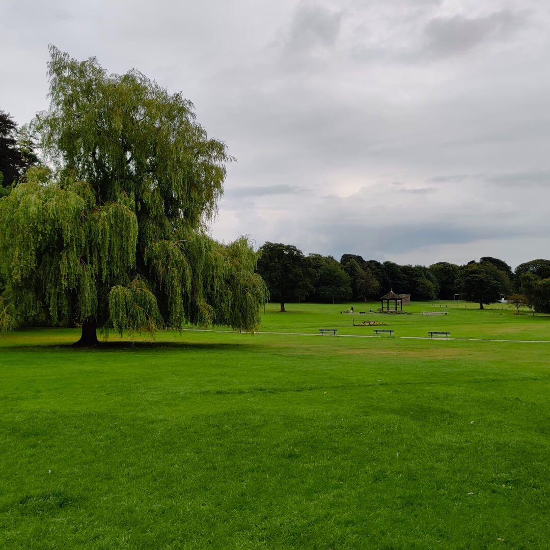 Horsforth Hall Park field