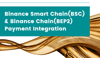 Announcing the Binance Chain (BEP2) and Binance Smart Chain (BSC) payment integration