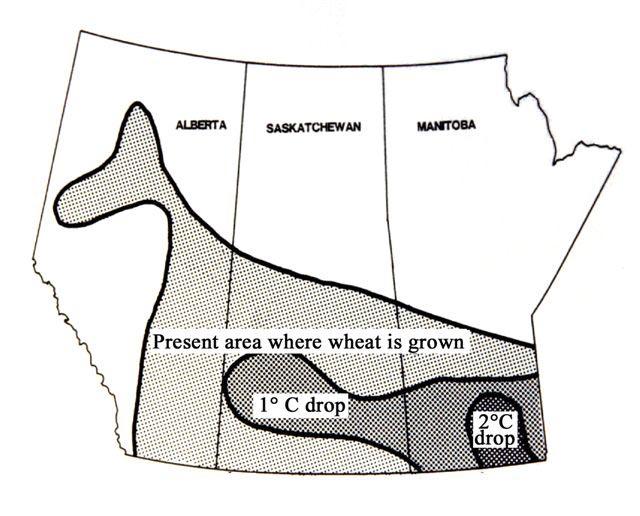 2. ábra: Kanada búzatermő területei jelenleg, 1 °C-os és 2 °C-os átlaghőmérséklet csökkenés esetén (Starr, S.)