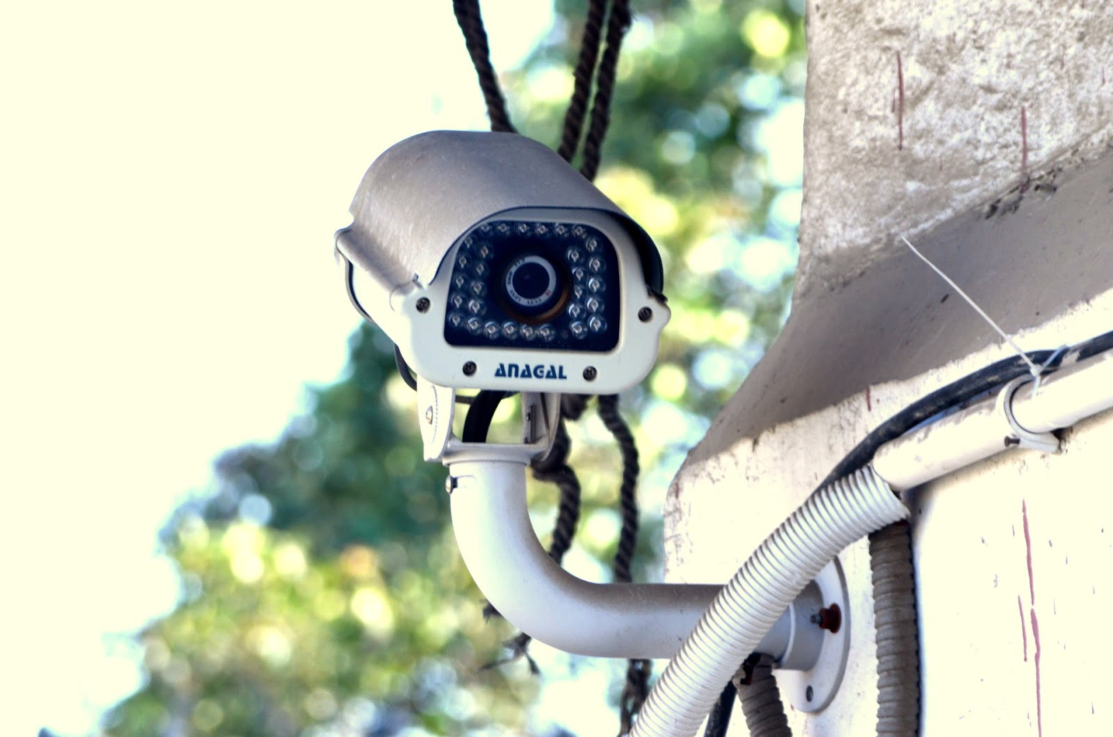 Analog IP Security Cameras
