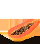 Papaya Red