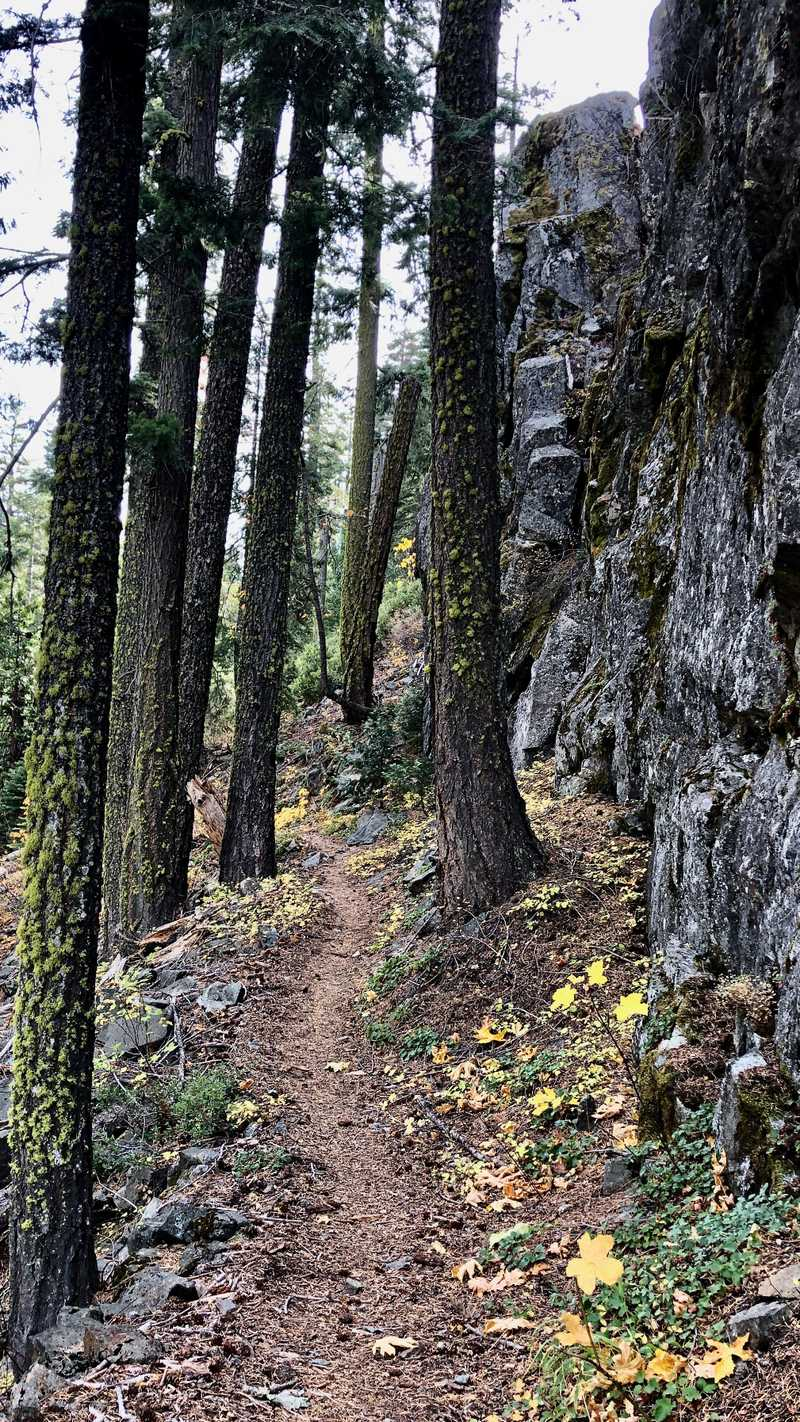 The trail next to a rock wall