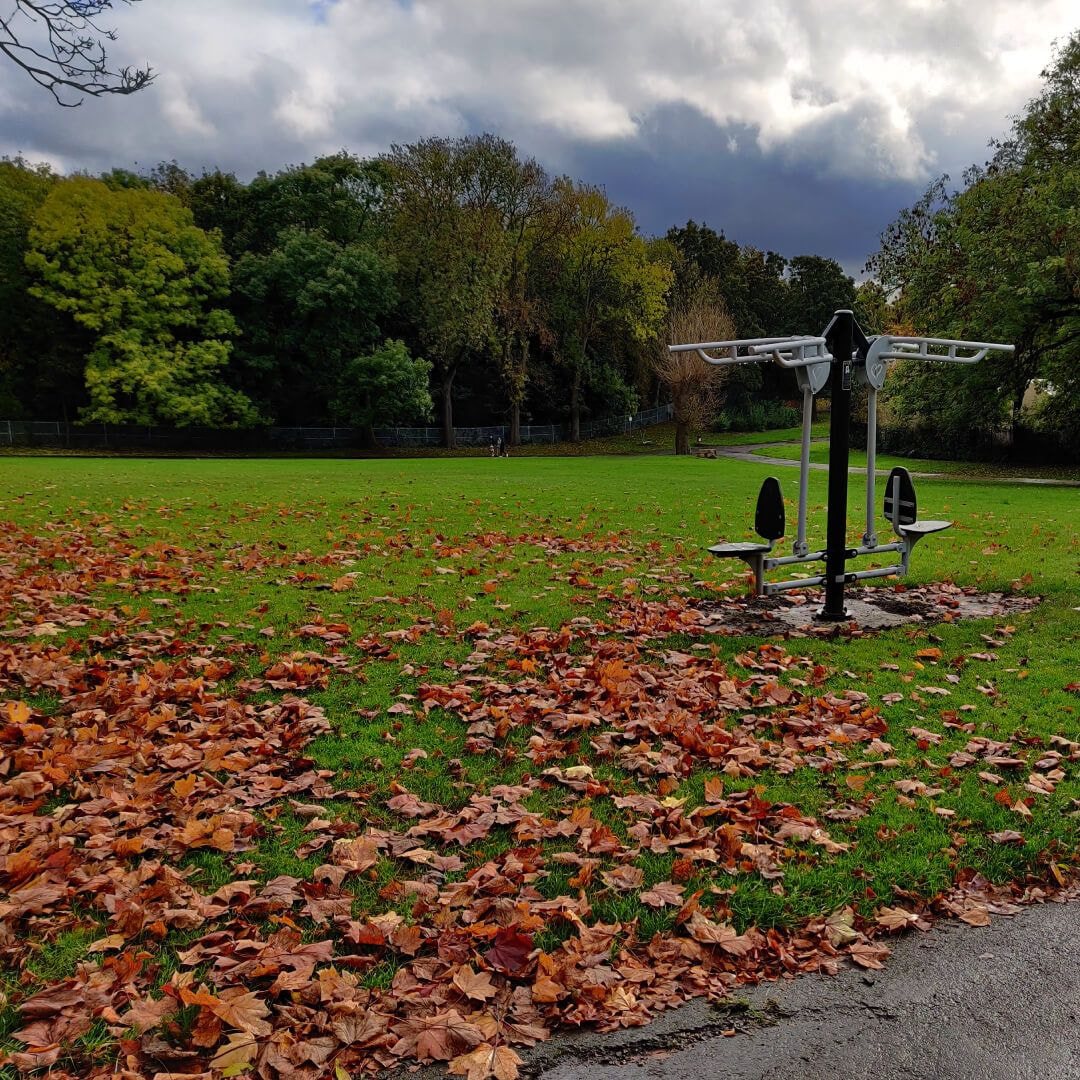 Burley Park outside gym arm exercise