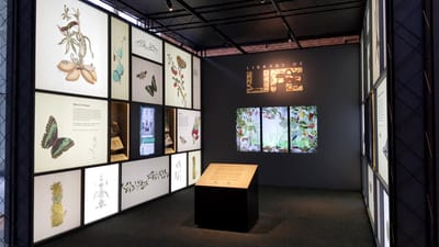 A photo of the Library of Life exhibition. A small tilted caption stand is placed in the middle. Three multimedia screens line the back wall. The left and right walls are lightboxes featuring various biodiversity illustrations, along with a showcase and multimedia screen.
