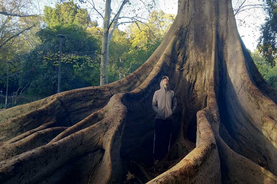 Matt chilling by a Moreton Bay Fig in Adelaide, South Australia