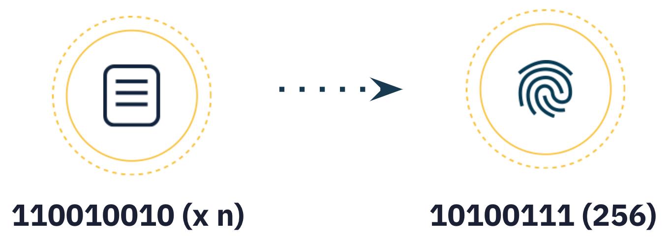 Cryptographic Algorithm infographic