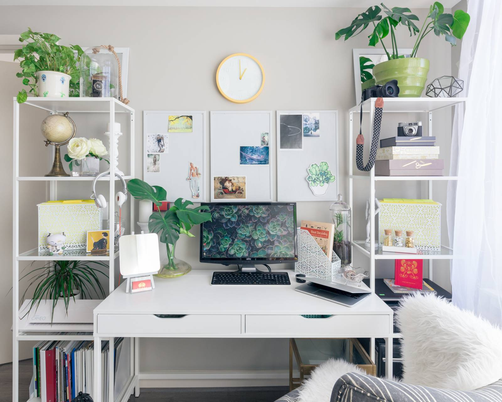 Plants on a desk with a computer