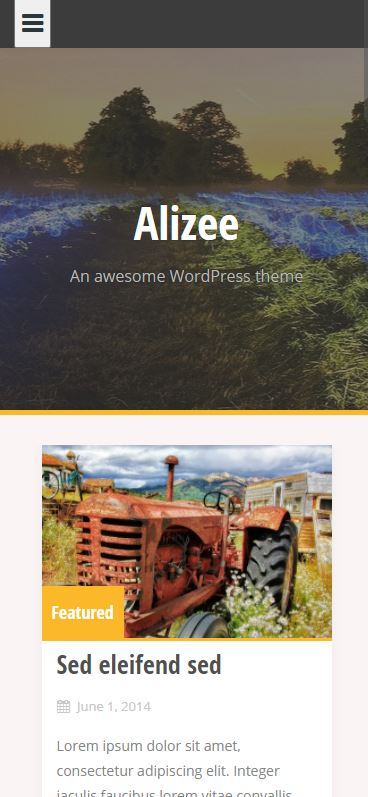 Demo Preview Mobile Smartphone for Alizee