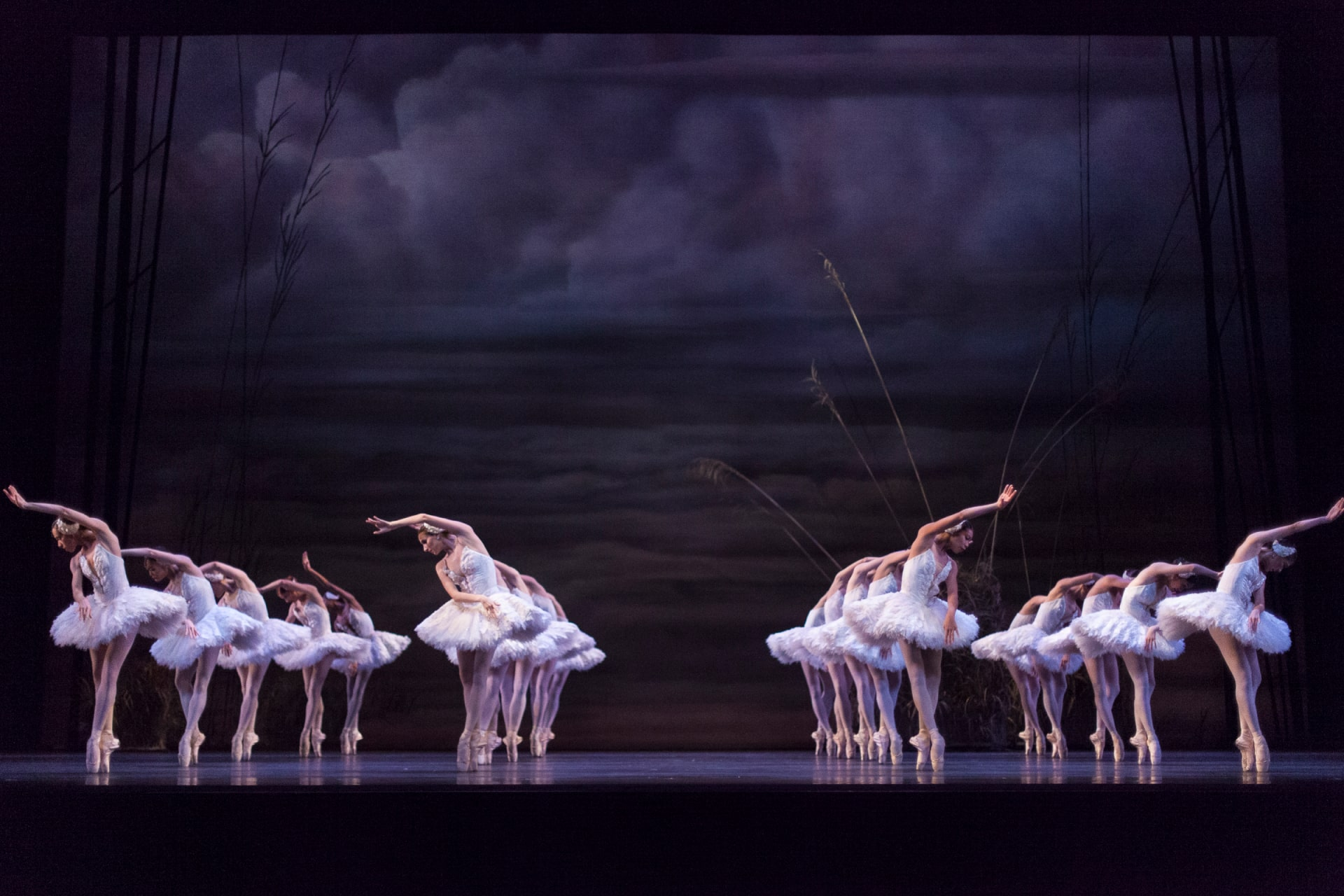 Four rows of ballerinas in white tutus, on point, against background of stormy rolling clouds.