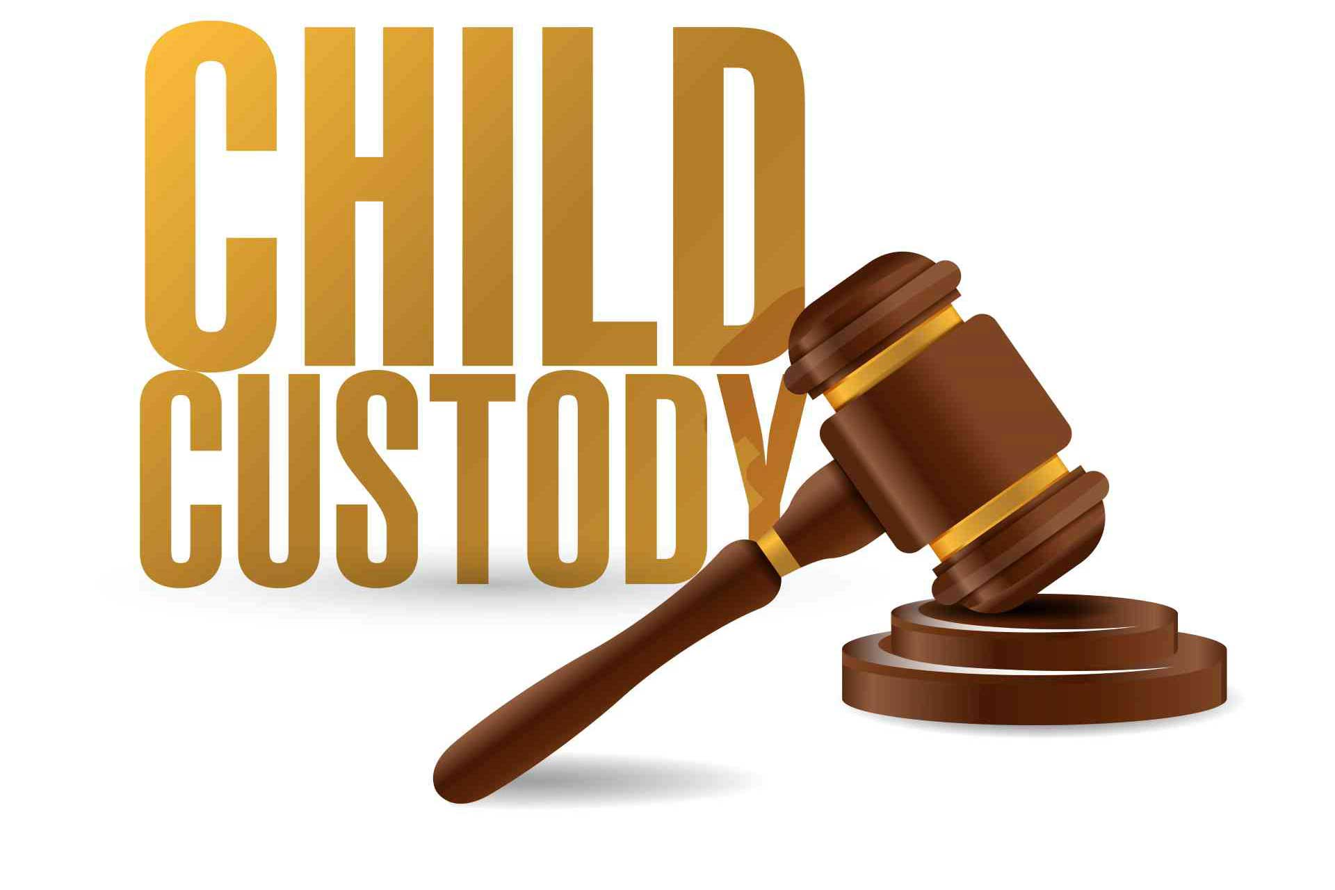 Child Custody log in Family Court