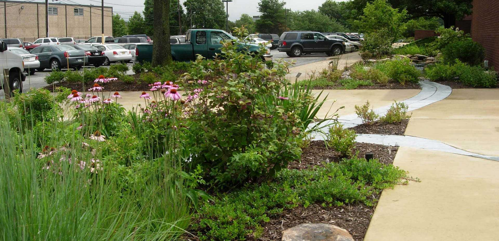 landscaping next to parking lot
