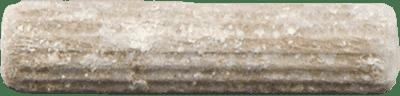 Mycelium plug | MycoLabs