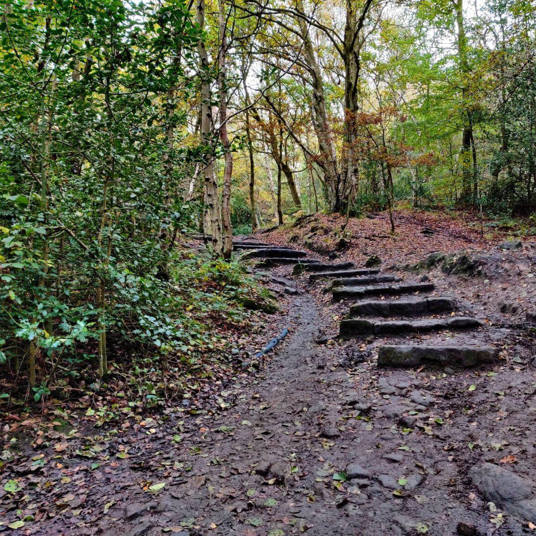 Adel woods stone steps