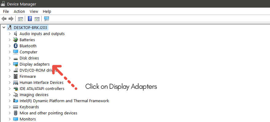 click on display adapters