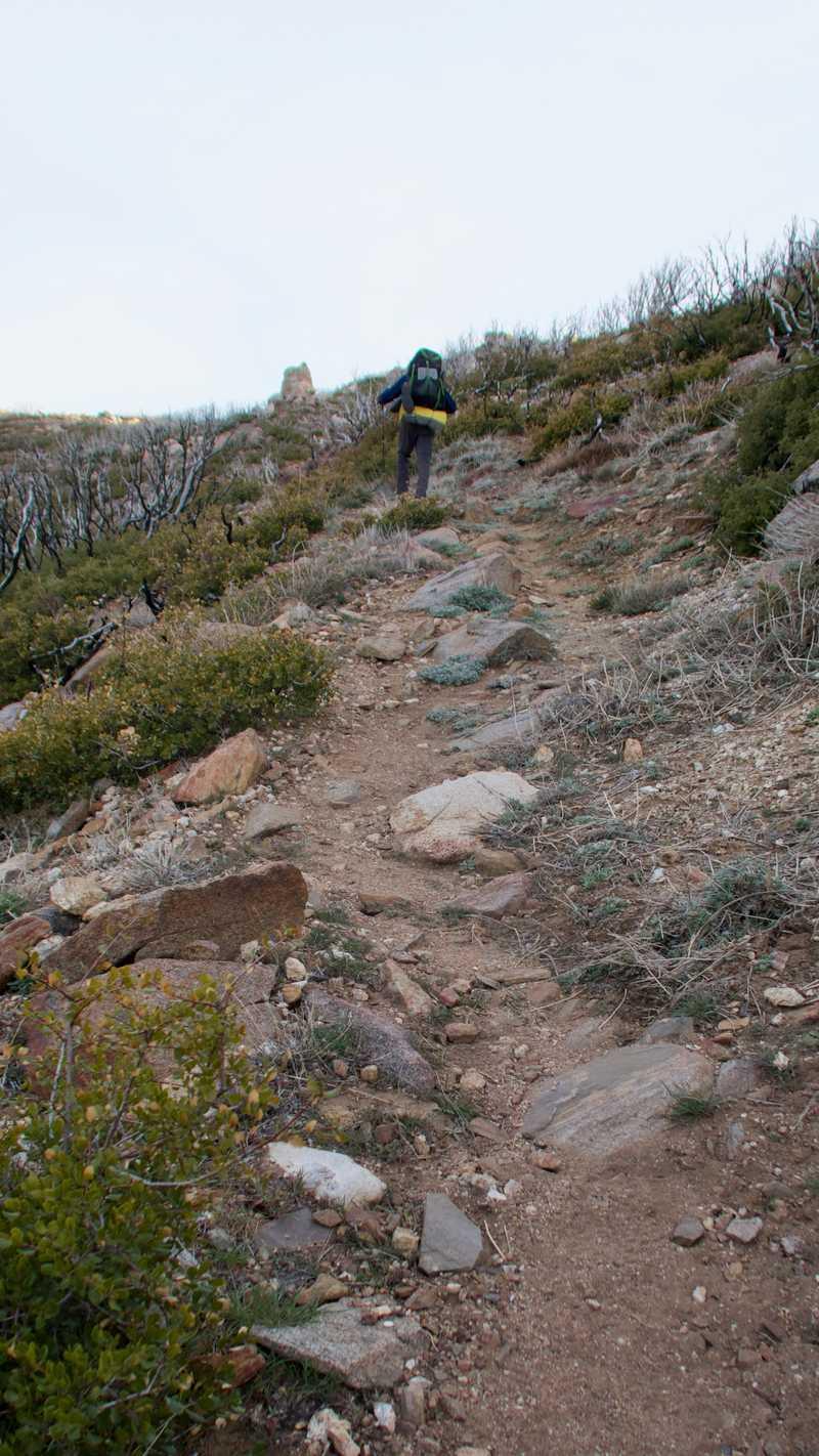Tengo on rocky trail