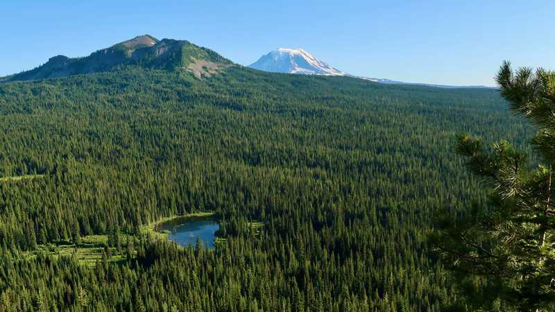 A view of Walupt Lake, Lakeview Mountain and Mt. Adams