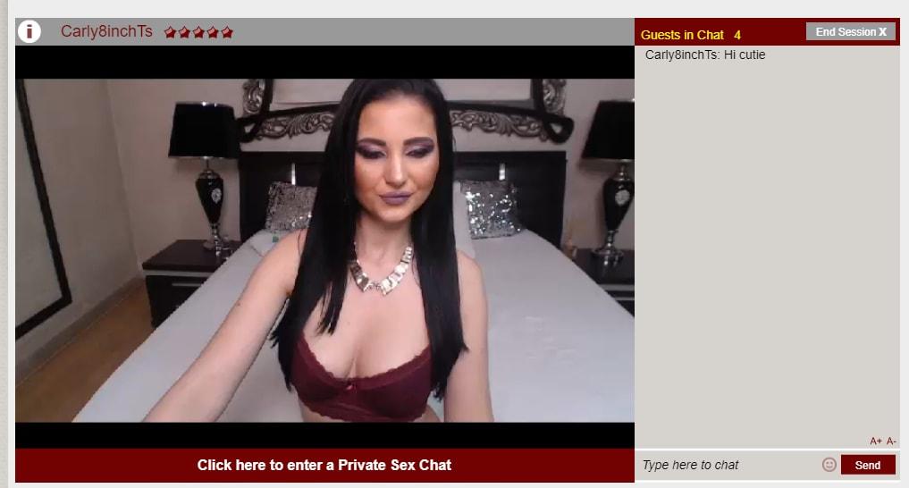 Shemale.com trans screenshot