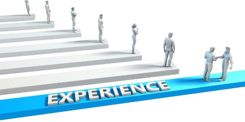 Company Experience
