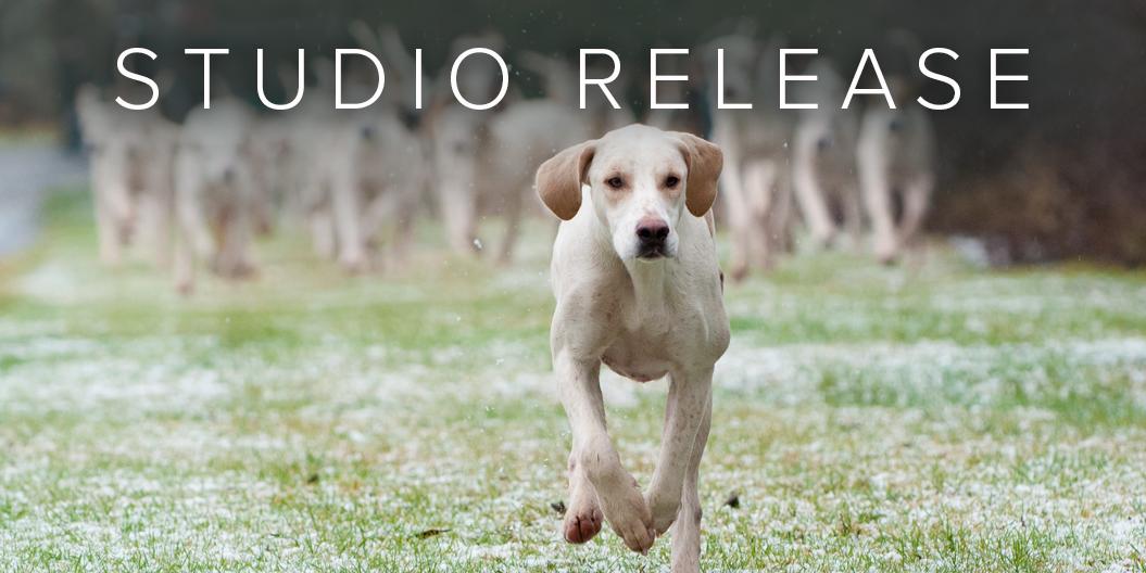 Stardog Studio 0.1.0
