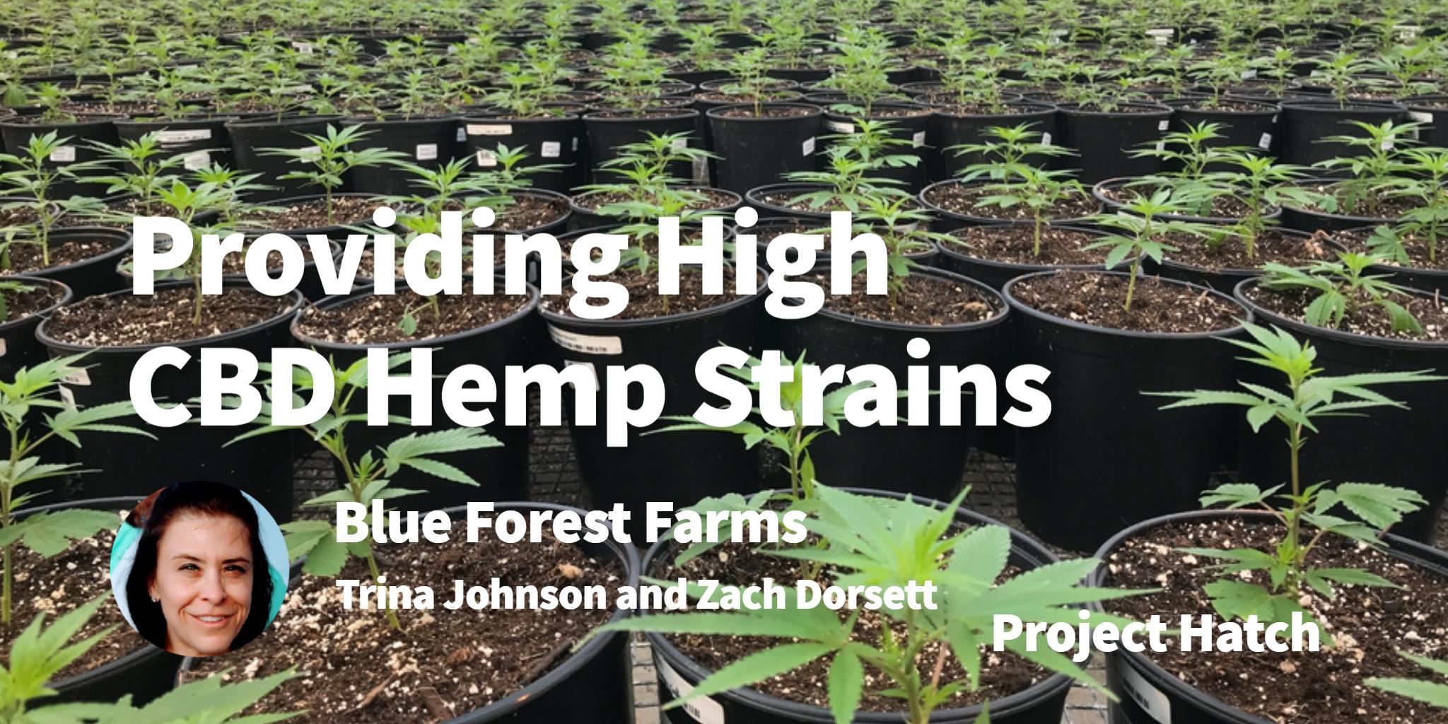 Blue Forest Farms Trina Johnson and Zach Dorsett