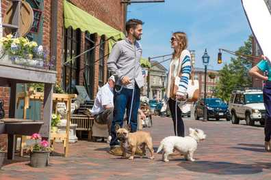 Dog Friendly Summer Events 2017
