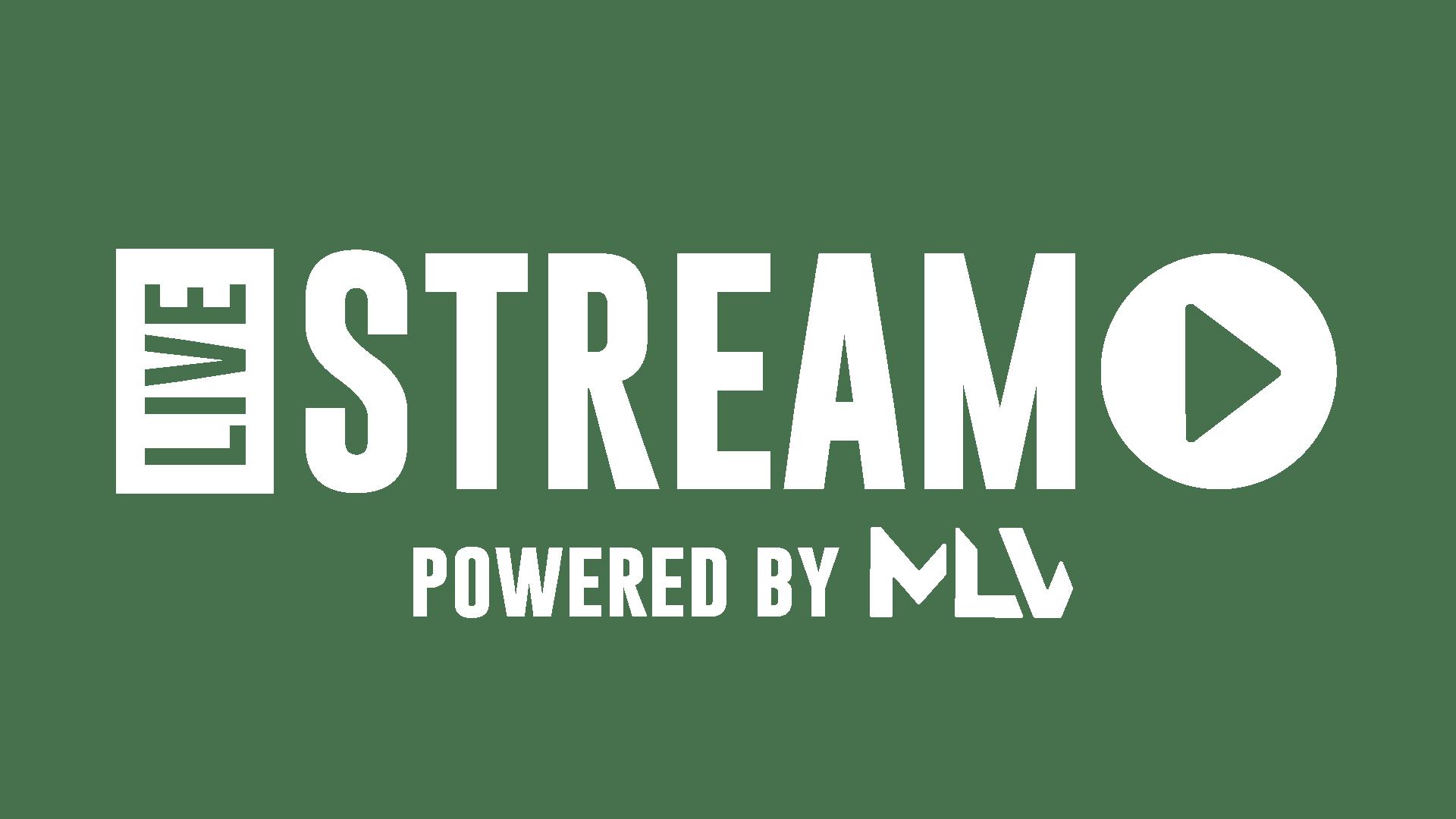 Logo spoločnosti MLV