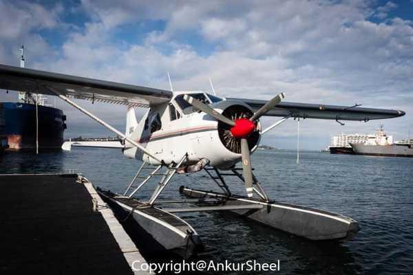 Auckland_Seaplanes-6