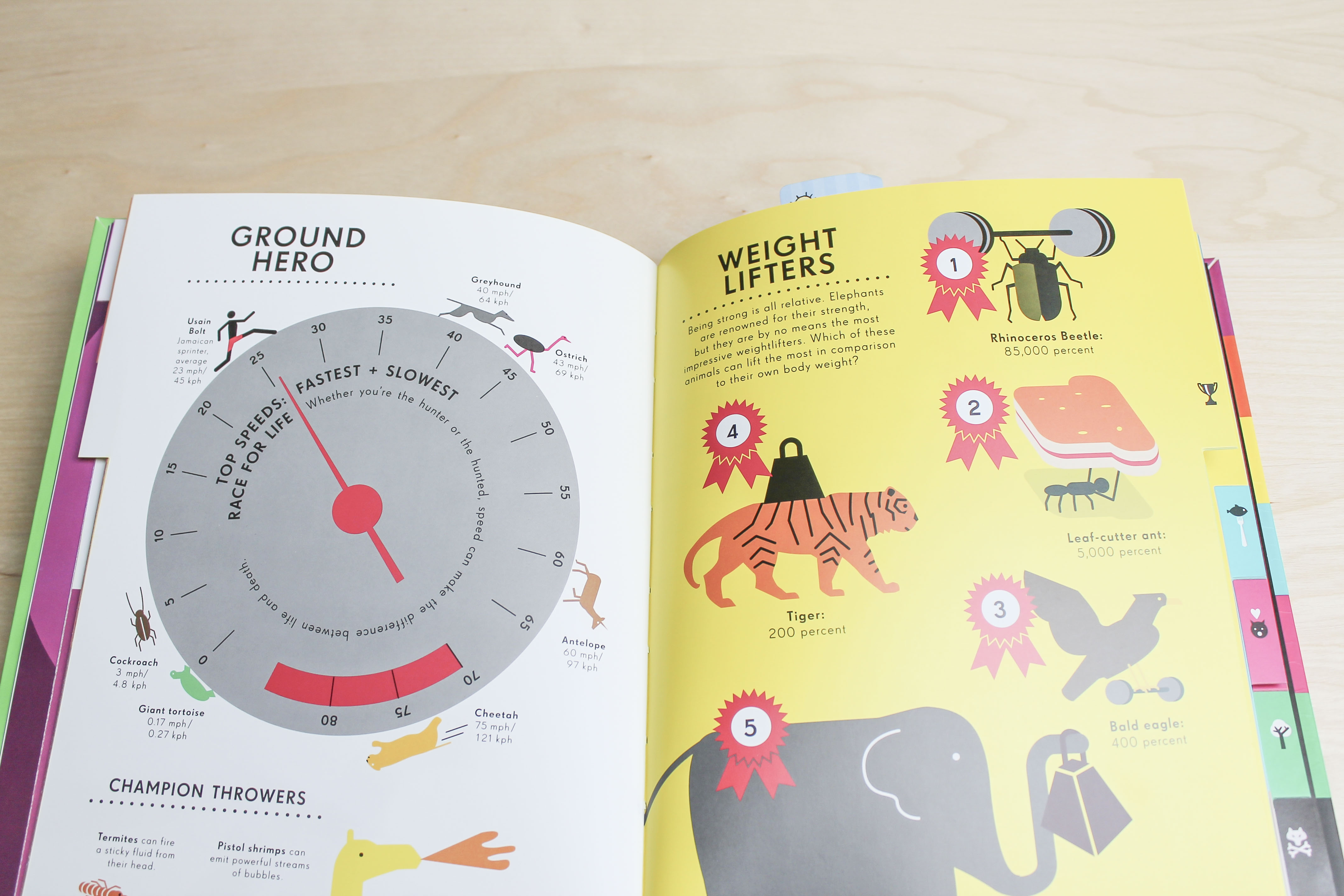 Interior picture of infographic book on animals
