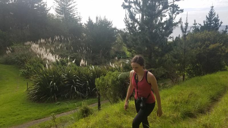 Emma hiking along near the site of a Maori pa