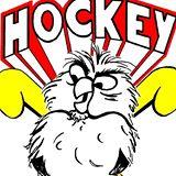 Image du logo USM vire Hockey